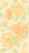 Queen Rose Beige Sabbia